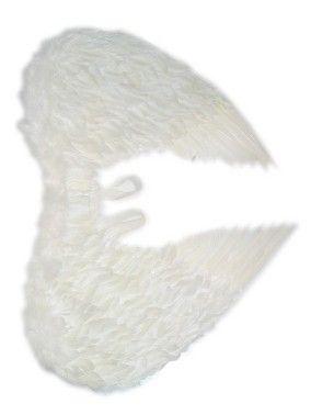 Engelsflügeln weiß
