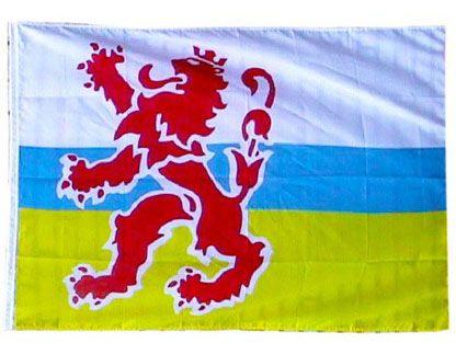 Original-Limburg Fahne mit Löwe