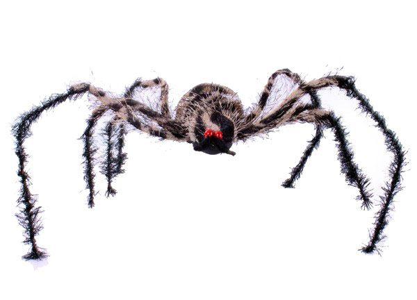 Halloween große braune Spinne mit biegsamen Beinen
