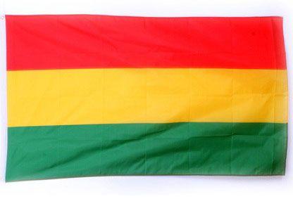 Fasching Flagge Luxus rot gelb grün