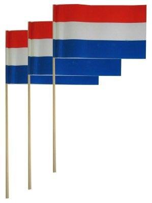 Papierfahnen auf Stick NL per 50